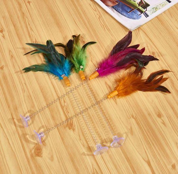 De kattenspeeltjes met veren en zuignap is er in verschillende kleuren