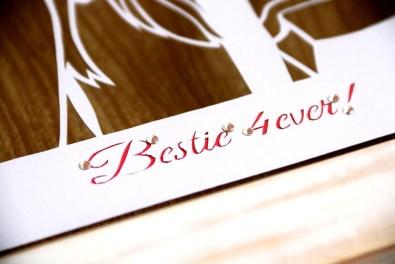 Cutteristic - Birthday Gift Santy Herlie 08