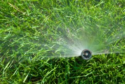 pop up sprinklers