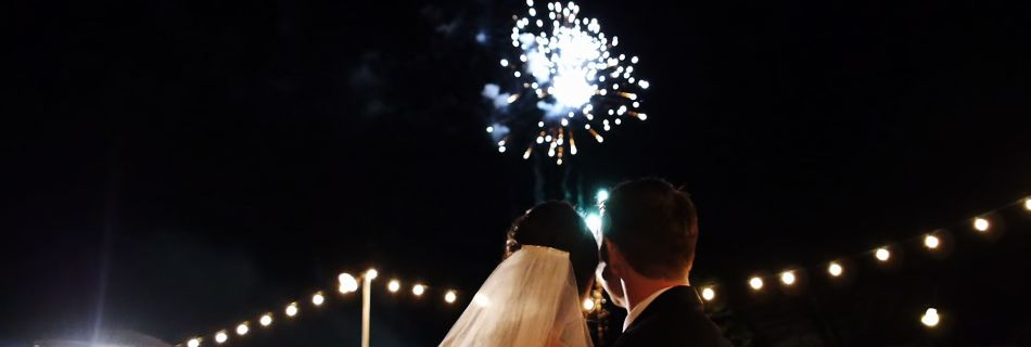 Adam Opris wedding at Morikami Japanese Gardens