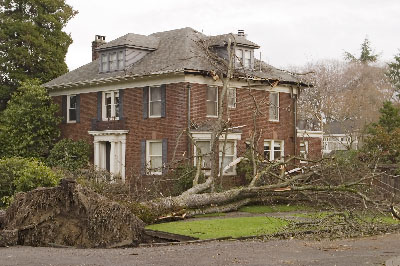 storm damage state college