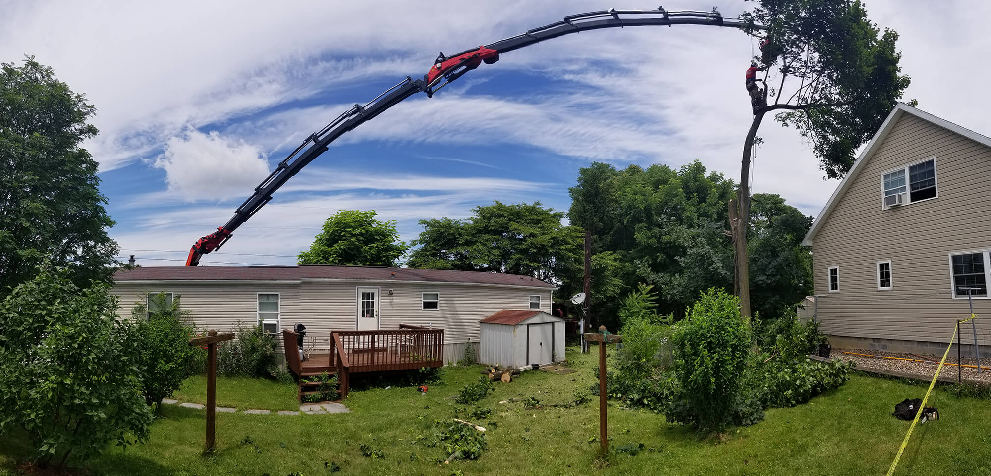 The large tree over the house is being removed one limb at a time with the Tree Mek