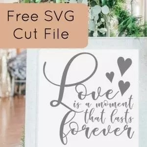 Download Free 'Love Is a Moment That Lasts Forever' SVG Cut File ...