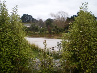 Another view of the completed pond and gardens