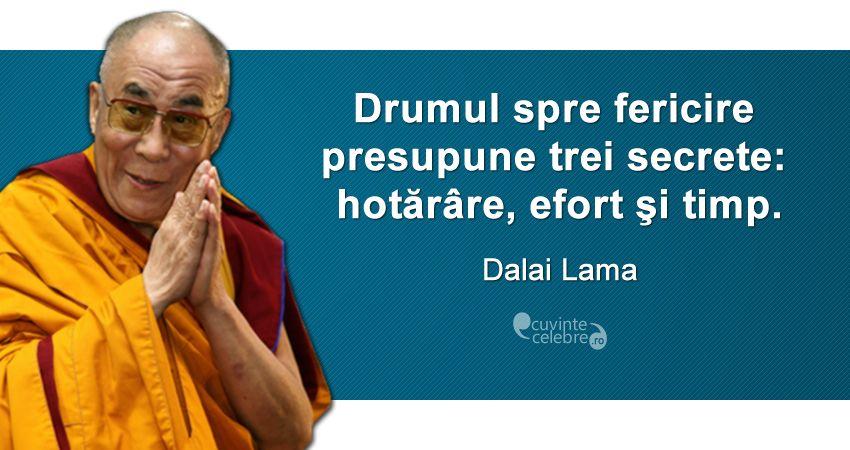Imagini pentru dalai lama citate