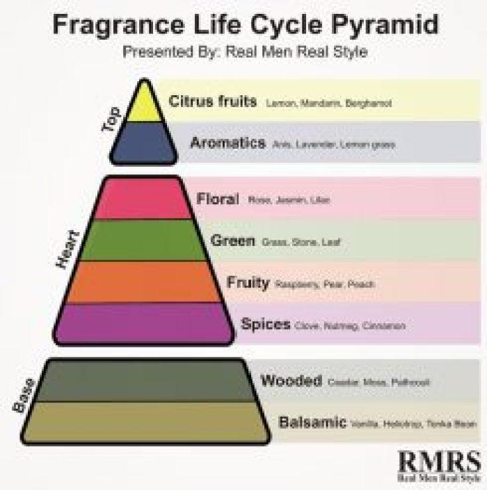 Understanding Perfume Notes