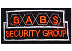 Babs Security Group
