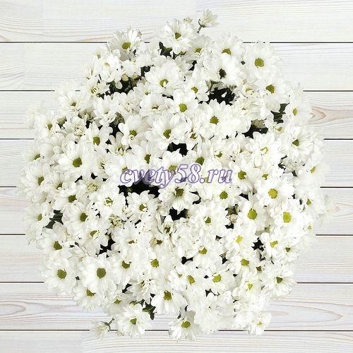"""Хризантема кустовая белая """"Bacardi"""" 70 см - Салон цветов и ..."""