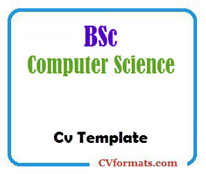 You will score more point with your data in regards to the employers and understanding of what they expect from you. Bsc Computer Science Cv Template Cvformats Com