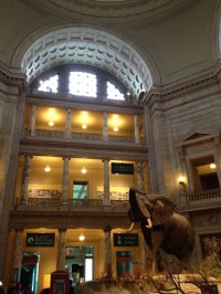 Students visited the National Museum of Natural History.