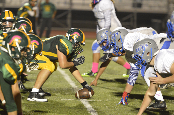 Football players and other athletes play on Trojan Stadium's artificial turf frequently. Photo by Jes  Smith.