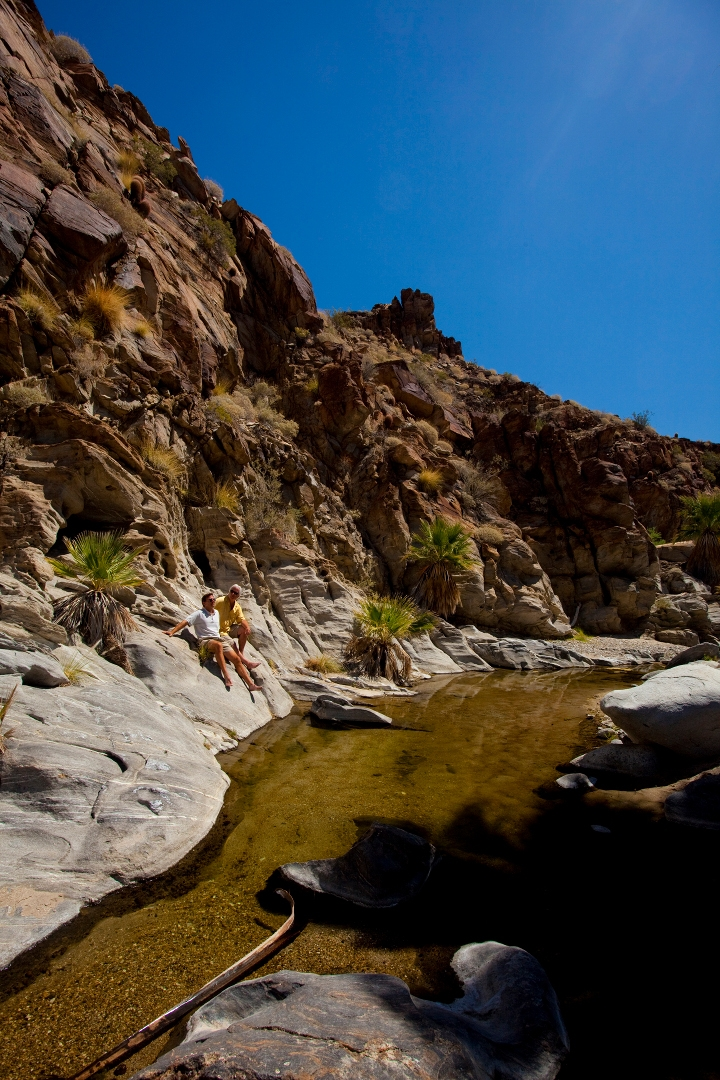 Photo courtesy of the Palm Springs Bureau of Tourism
