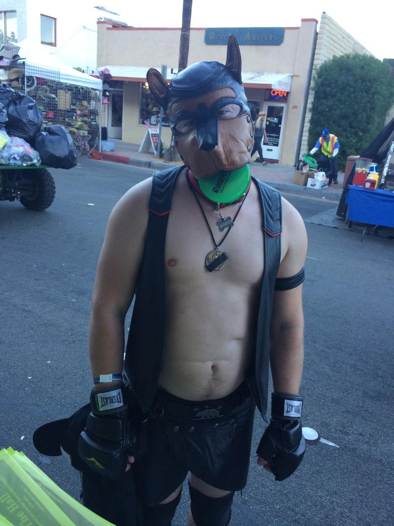 images/Palm Springs Pride Festival 2014/pup-stixxx_15756630771_o