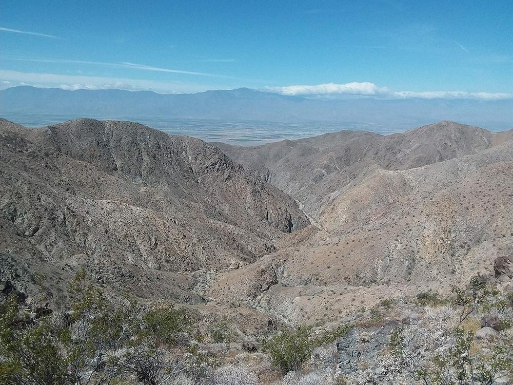 Courtesy of the Mojave Desert Land Trust.