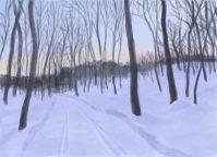 Deb Dwyer: On the VAST Trail