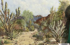 Honorable Mention Tracy Hartman Just Beyond The Cholla