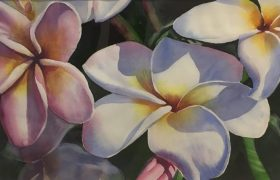 Honorable Mention Karen Felker Harris Singapore Plumerias