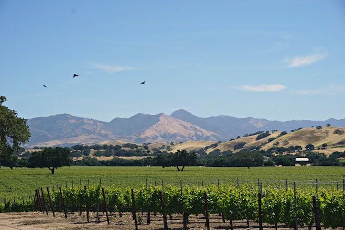 flying flags rv resort california