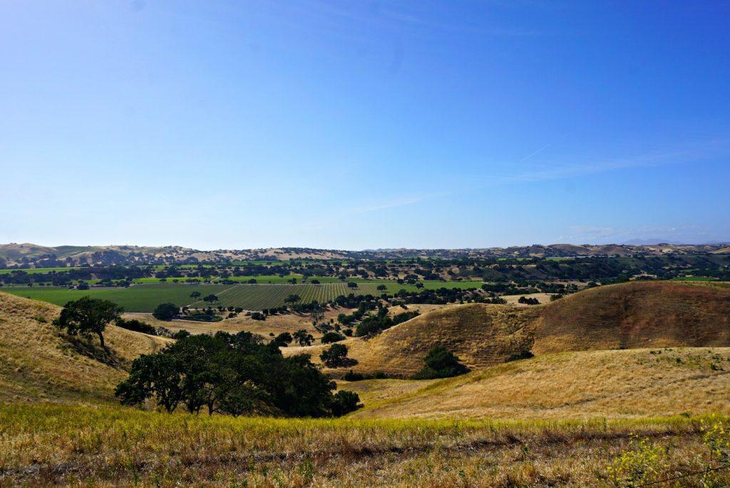 santa ynez valley los olivos driving views of vineyards