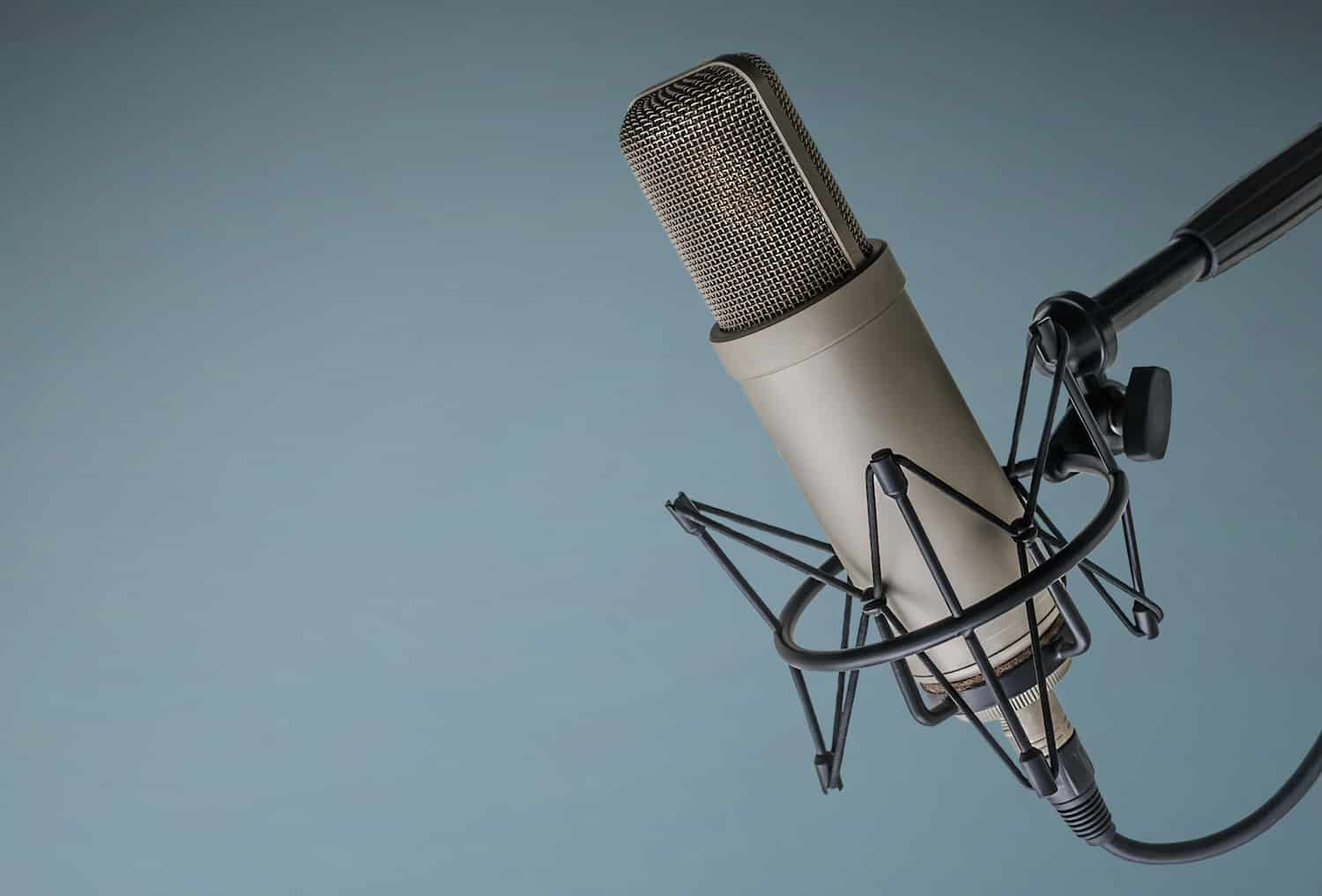 professional microphone for podcasts