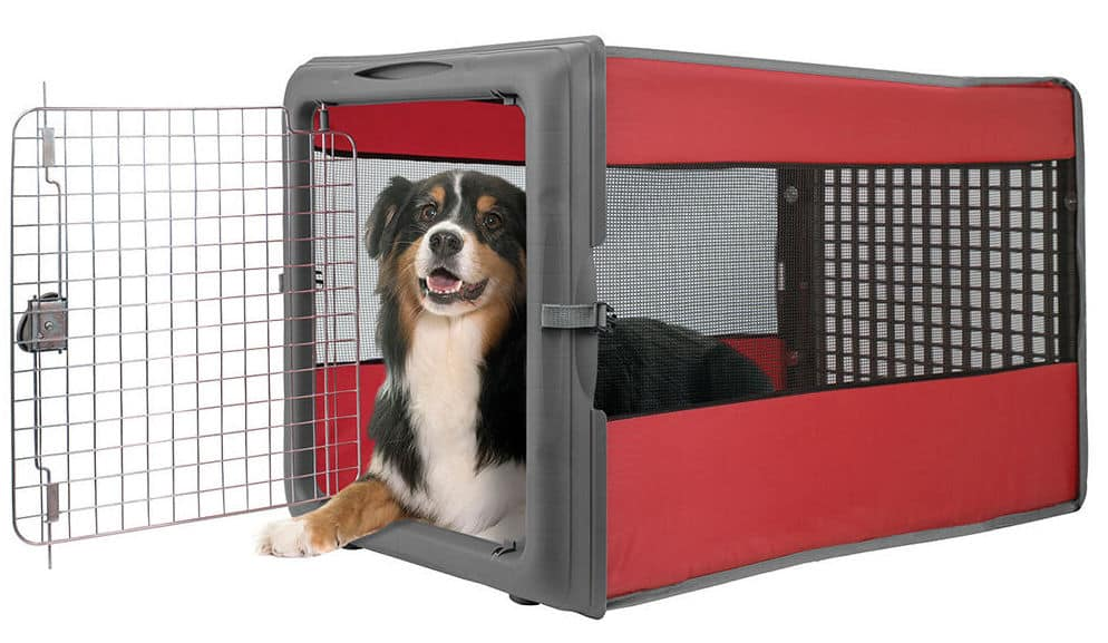 dog camping crate with a dog in it