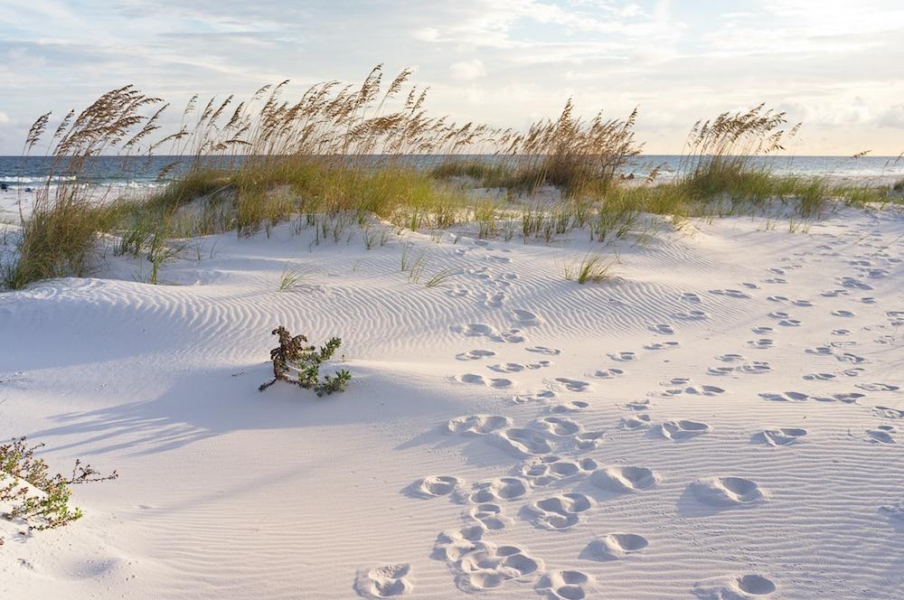 fort-pickens-beach-florida