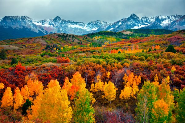 Colorado Autumn.