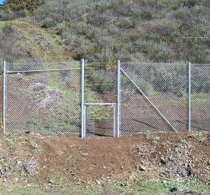Deer Fencing and Wildlife Gate