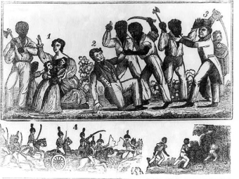 Are Slave Rebellions Part of the Story of American Freedom?