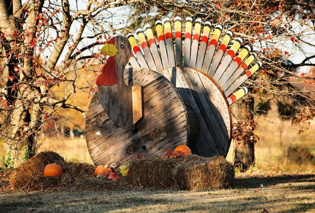 thanksgiving+turkey