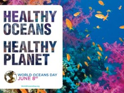 Healthy Ocean