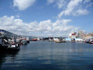 puerto de la ciudad de vigo (7)