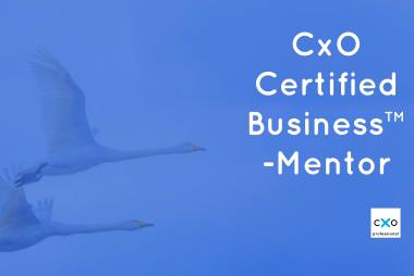 Certified Business Mentor-koulutus featured image