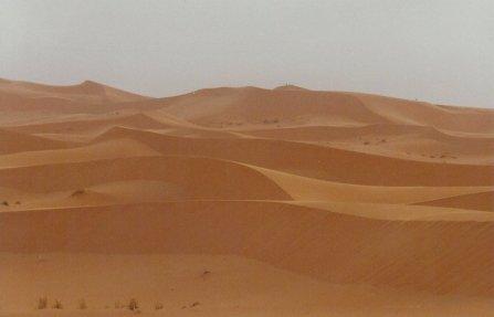ma1999-desert-04