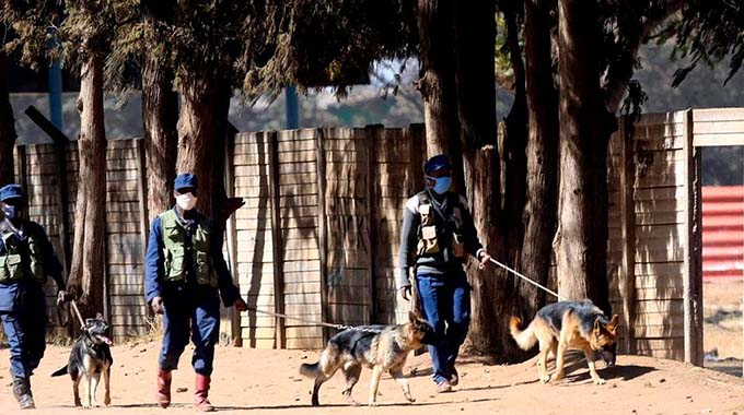 ZRP Ordered To Compensate Dog Attack Victim
