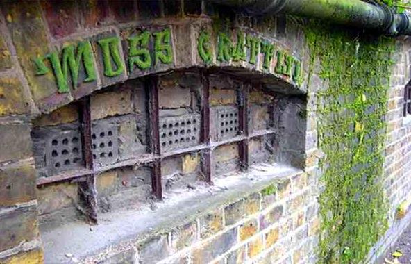 eco graffiti 2 New Trend : The Eco Graffiti