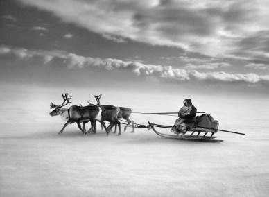 Yamal Peninsula, Siberia, Russia, 2011