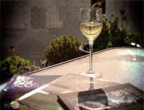 Ahhh Clive, a garden and a library and a glass of wine