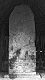 stelae at Coba