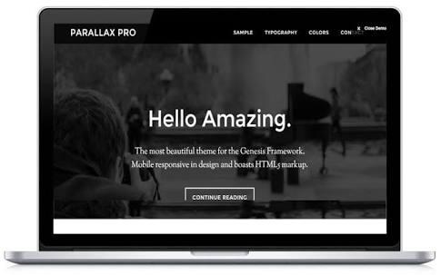 Parallax Theme Pro