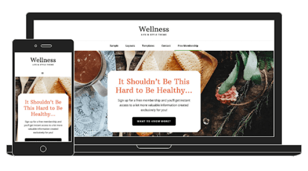 wellness pro theme review