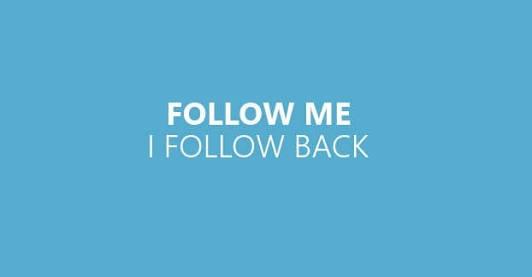 follow back