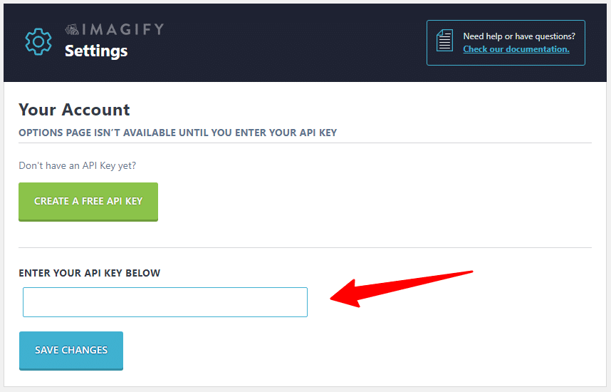 API Filed in Imagify settings page