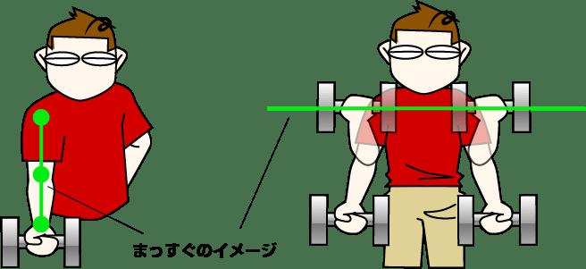 単関節種目(アイソレーション)アームカール