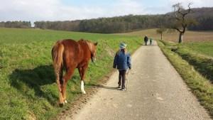 Cody mit Alina beim Sonntagsspaziergang