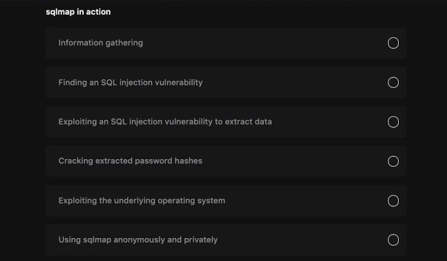 sqlmap in action section
