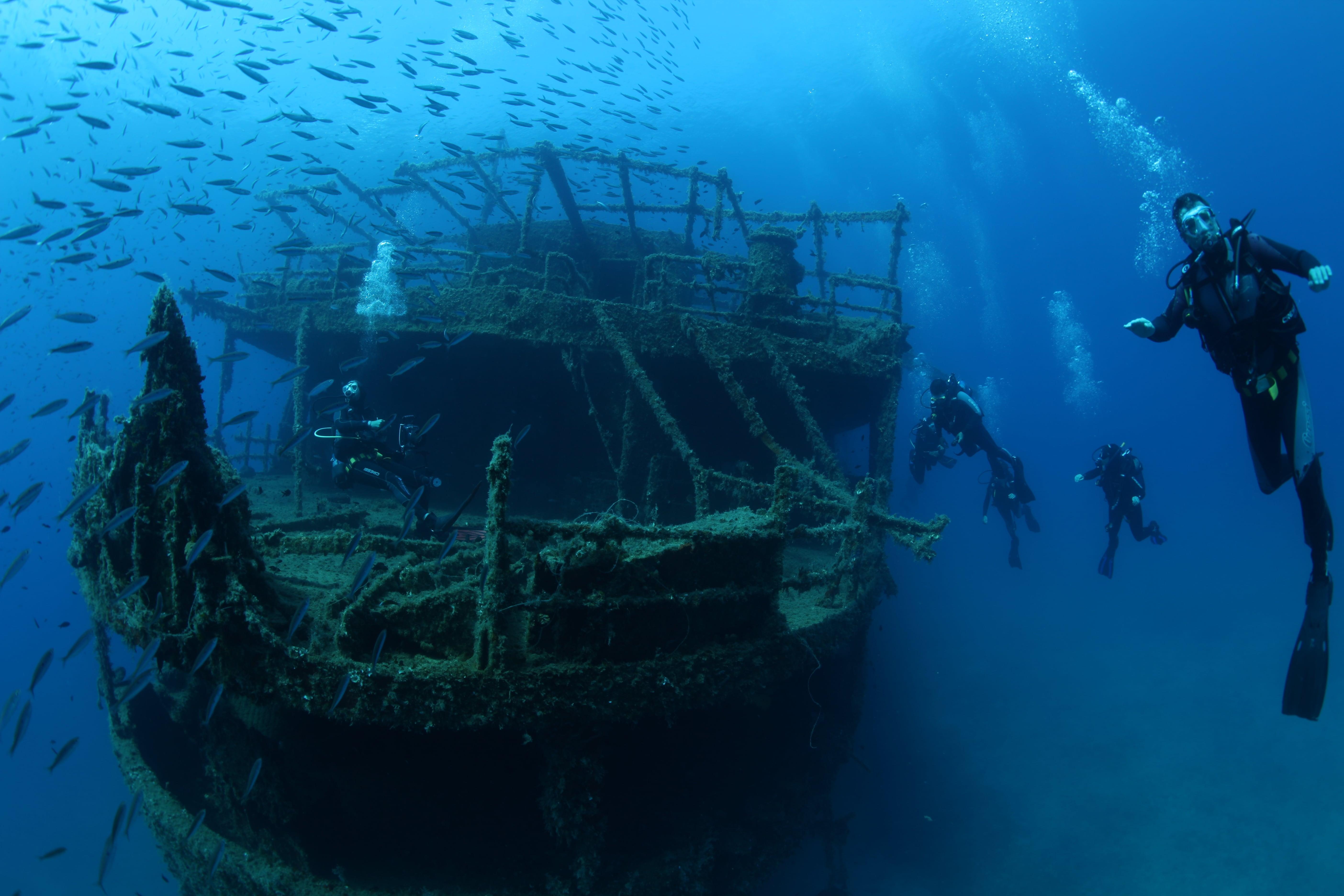 Blue Fin Divers   Naxos Island