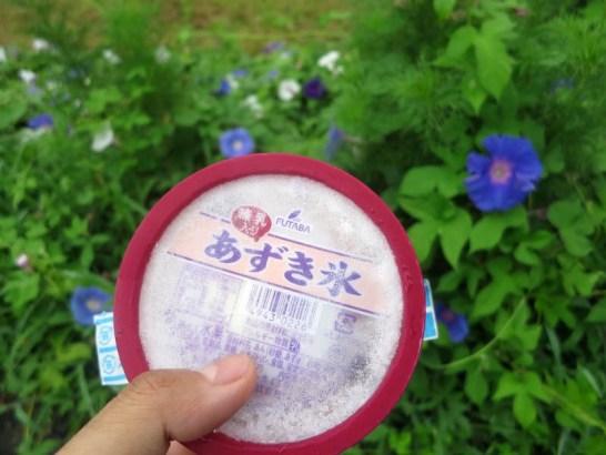 tsumari01_05