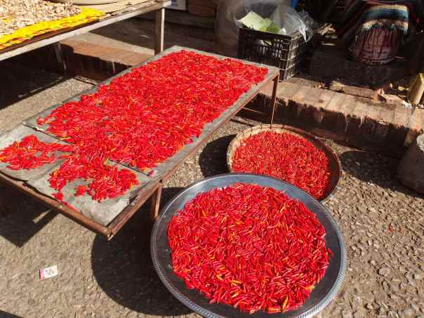 Red chilis drying near the road.