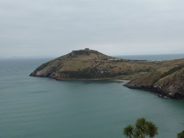 View from the Otago Peninsula looking towards the Albatross Colony.